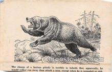 ber002072 - Furious Grizzly  Postcard Post Card