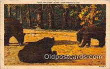 ber002087 - Bears Good Wishes  Postcard Post Card