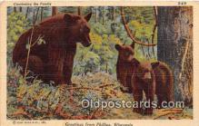 ber002088 - Phillips Wisconsin Postcard Post Card