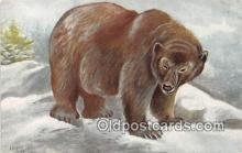 ber002115 - Grizzly Bear Ursus Horribilis Postcard Post Card