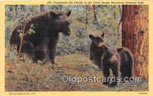 ber002129 - Great Smoky Mountains National Park Postcard Post Card