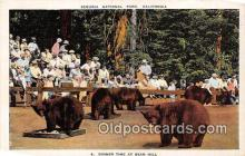 ber002136 - Bear Hill Sequoia National Park, California Postcard Post Card