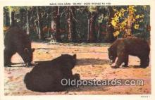 ber002157 - Bears Good Wishes  Postcard Post Card