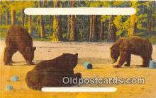 ber002182 - Postcard Post Card