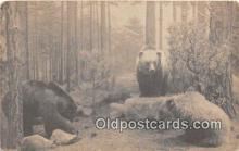 ber002253 - Bears, Vintage Collectable Postcards