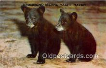 ber002255 - Bears, Vintage Collectable Postcards