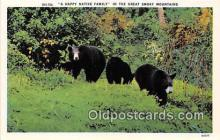 ber002260 - Bears, Vintage Collectable Postcards