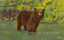 ber002280 - Bears, Vintage Collectable Postcards