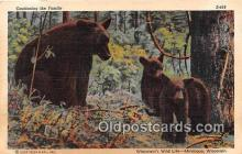 ber002286 - Bears, Vintage Collectable Postcards