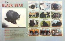 ber002287 - Bears, Vintage Collectable Postcards