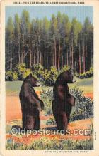 ber002301 - Bears, Vintage Collectable Postcards
