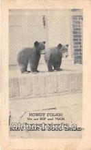 ber002302 - Bears, Vintage Collectable Postcards