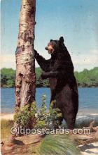 ber002306 - Bears, Vintage Collectable Postcards