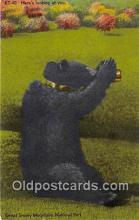 ber002308 - Bears, Vintage Collectable Postcards