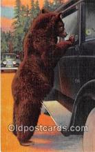 ber002312 - Bears, Vintage Collectable Postcards