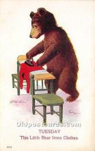 ber006003 - Bear Postcard