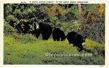 ber006058 - Bear Postcard