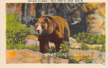 ber006062 - Bear Postcard