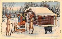 ber007315 - Bear Post Card Old Vintage Antique