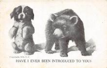 bev006117 - Bears Postcard Old Vintage Antique Post Card