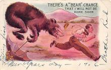 bev006119 - Bears Postcard Old Vintage Antique Post Card