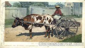 bla001139 - Mammy Going to Market Black Blacks Postcard Post Card