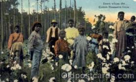 bla001159 - Black Blacks Postcard Post Card