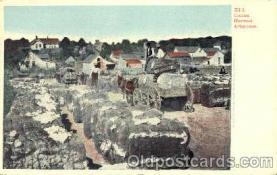 bla001177 - Cotton Harvens Arkansas, Black Blacks Postcard Post Card