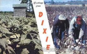 bla001321 - Greeting from Dixie Black, Blacks Postcard Post Card