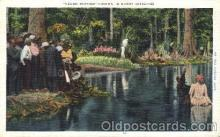 bla001361 - Sunny Dixie Negro Baptism Black, Blacks Postcard Post Card