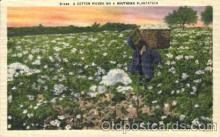 bla001425 - a Southern Plantation Black, Blacks Postcard Post Card