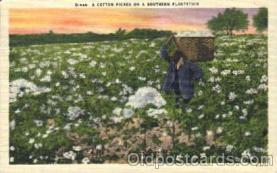 a Southern Plantation