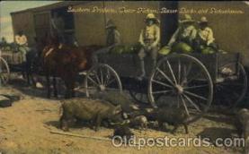 bla001427 - Razors Rock and Pickaninnies Black, Blacks Postcard Post Card