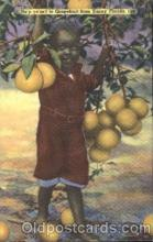 bla001456 - Grapefruitfrom Sunny Florida Black, Blacks Postcard Post Card