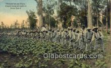 bla100001 - Strips but no stars, Chain Gang at work in Dixie Land
