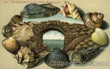 bor001012 - S142, The stone Arch on the Cliffs, Newport, RI USA, Shell Border Postcard Post Card