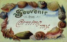 bor001035 - Cornning, New York, NY, USA Shells, Shell Border, Postcard Post Card