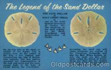 bor001053 - Sand Dollar Shells, Shell Border, Postcard Post Card