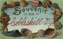 bor001057 - Cobleskill, NY, New York, USA Shells, Shell Border, Postcard Post Card