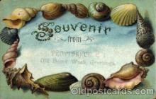 bor001064 - Providence, R.I. Old home Week Greetings Shells, Shell Border, Postcard Post Card