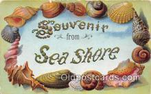 bor001079 - Sea Shore Postcard Post Card