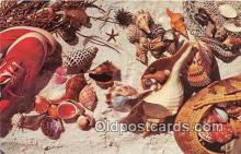 bor001096 - Shells, Vintage Collectable Postcards