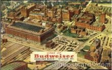 bre001087 - Budweiser St. Louis, Mo. Beer Brewery, Breweries, Post Card Post Card