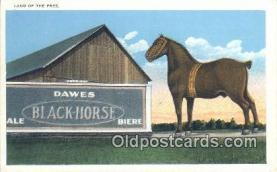 bre001225 - Land of the Free, Dawes Black Horse  Postcard Post Cards Old Vintage Antique
