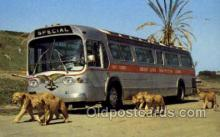 bus010116 - Greyhound Bus Buses, Old Vintage Antique Post Card Postcard