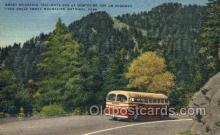 bus010165 - Smoky Mountain Trailways Bus, Asheville, NC USA Bus Buses, Old Vintage Antique Post Card Postcard