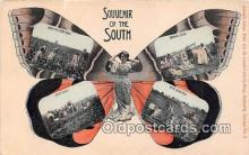 Souvenir of the South, Cotton Field