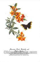 but001127 - Mourning Cloack Butterfly & Flame Azalea Artist RT Peterson Postcard Post Card