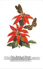but001139 - Zebra Butterfly & Poinsettia Artist RT Peterson Postcard Post Card