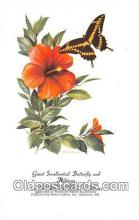 but001144 - Giant Swallowtail Butterfly & Hibiscus Artist RT Peterson Postcard Post Card